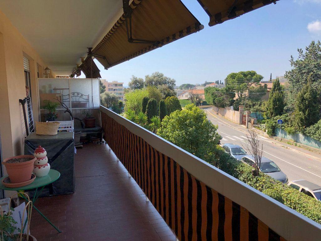 Appartement à louer 2 49.6m2 à Antibes vignette-1