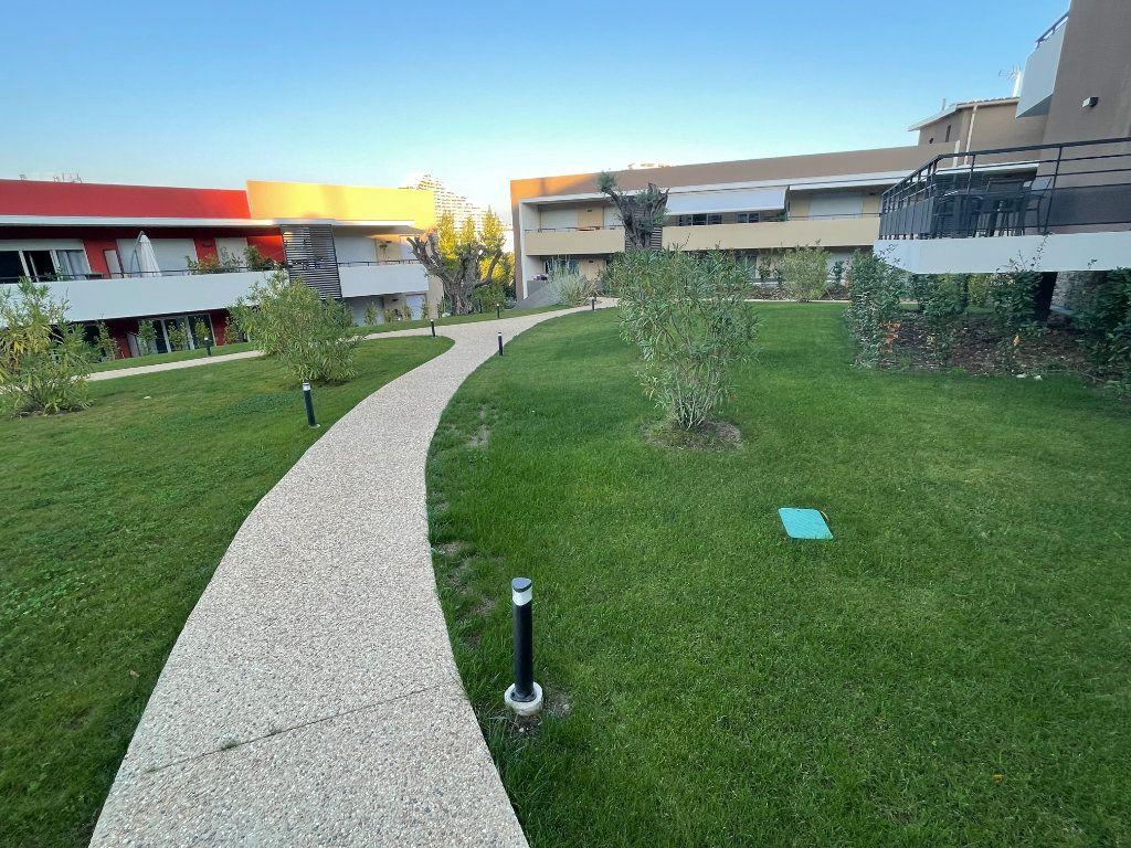 Appartement à louer 1 29.7m2 à Villeneuve-Loubet vignette-1