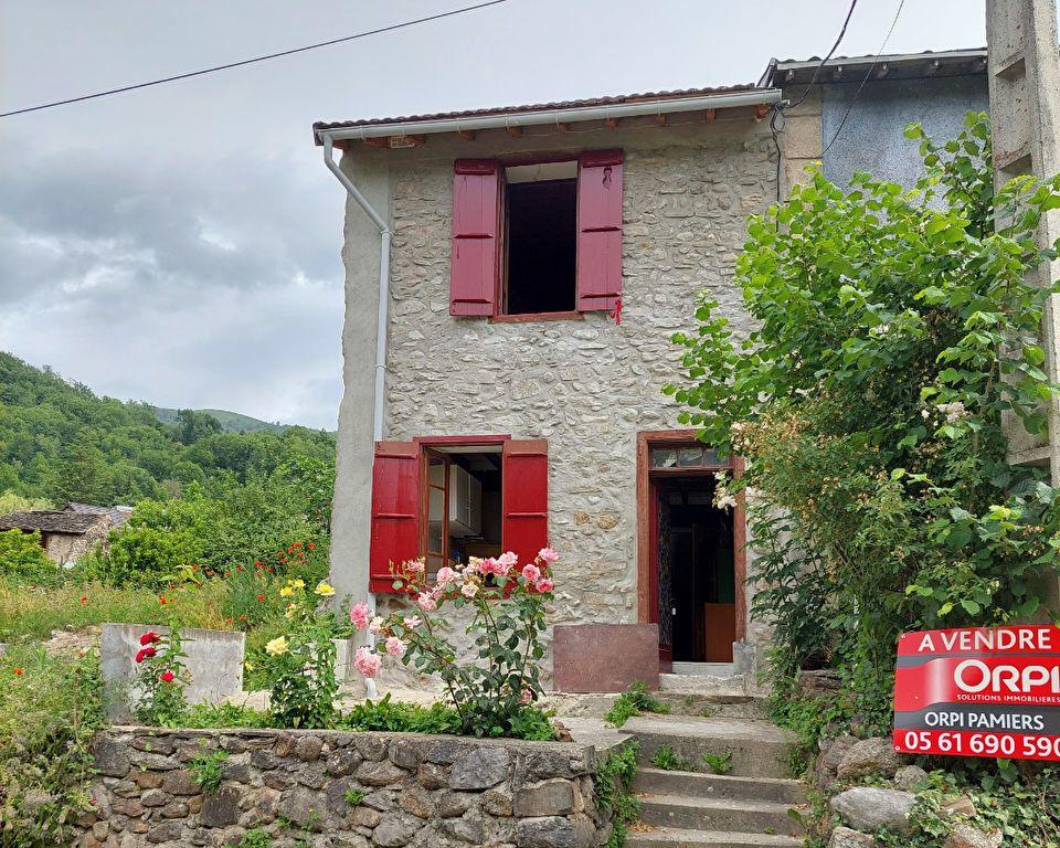 Maison à vendre 3 60m2 à Saurat vignette-2