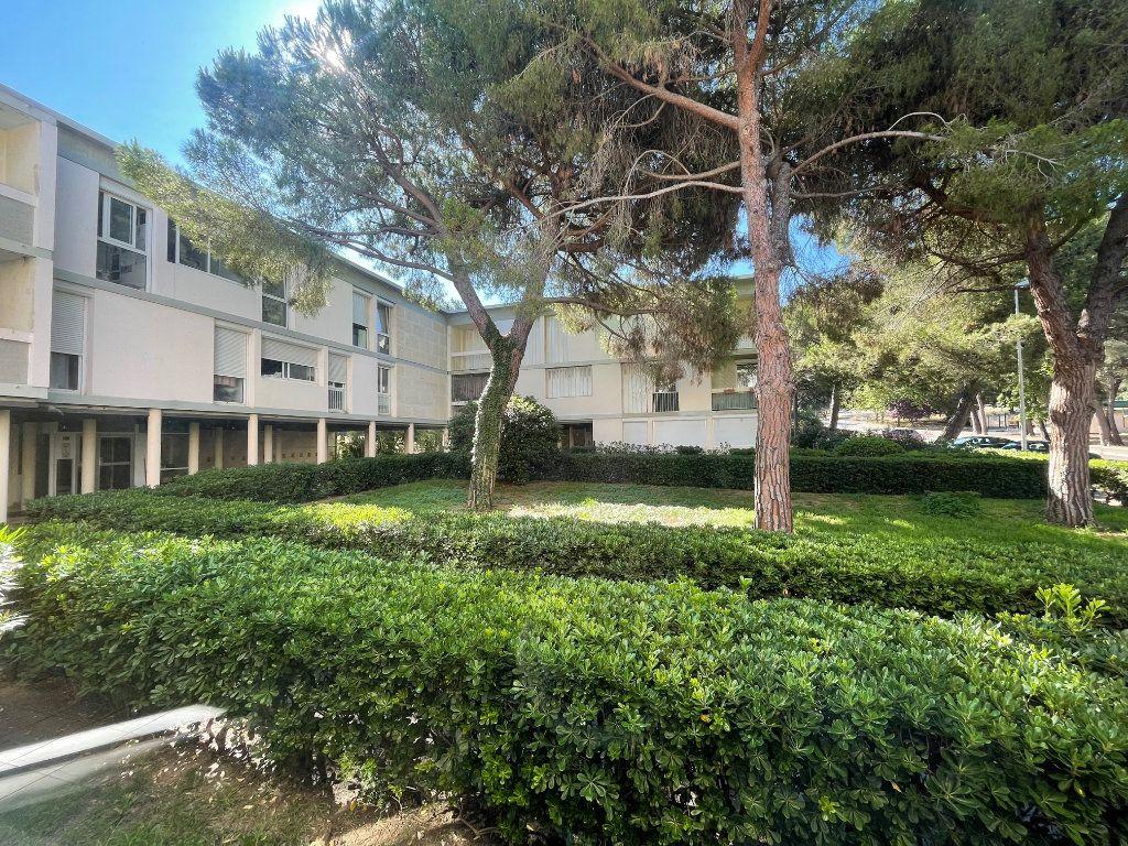 Appartement à louer 1 29.14m2 à Marseille 8 vignette-6