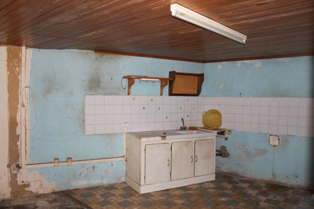 Maison à vendre 5 110m2 à Saint-Thurien vignette-7
