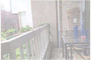 Appartement à vendre 1 30m2 à Vincennes vignette-3