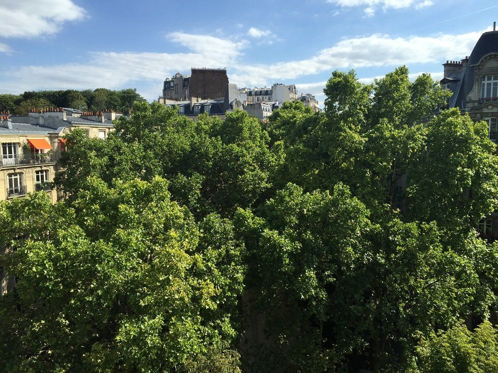 Appartement à louer 1 20.09m2 à Paris 18 vignette-8