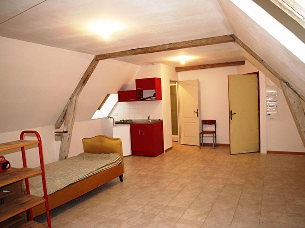 Appartement à louer 1 33.9m2 à Neuilly-en-Vexin vignette-3