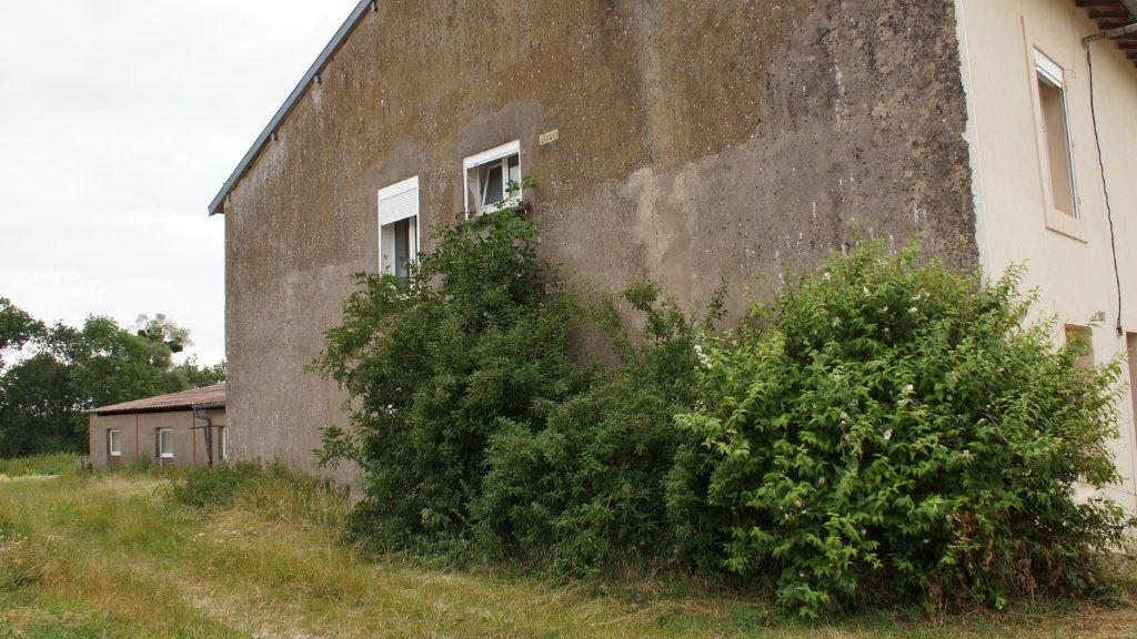 Maison à vendre 6 105m2 à Saint-Hilaire-en-Woëvre vignette-4