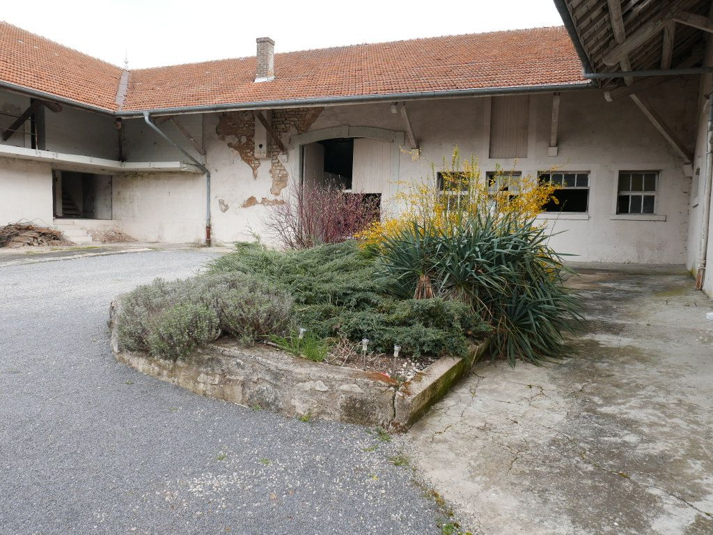 Maison à vendre 12 365m2 à Rumont vignette-3