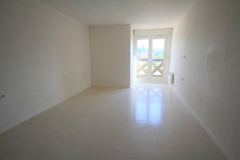 Appartement à louer 1 23.94m2 à Touques vignette-1