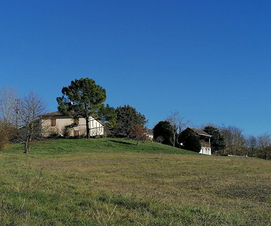 Maison à vendre 8 270m2 à La Salvetat-Belmontet vignette-1