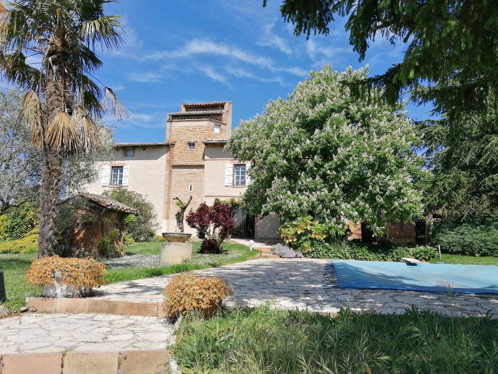 Maison à vendre 11 417m2 à La Salvetat-Belmontet vignette-2