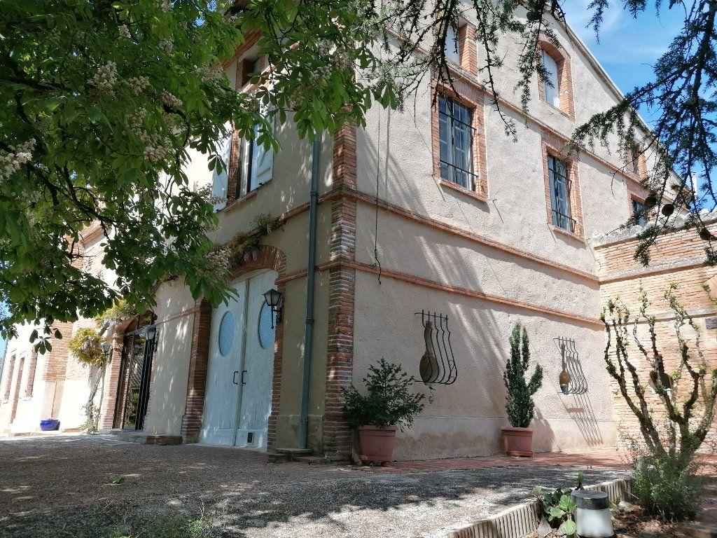 Maison à vendre 11 417m2 à La Salvetat-Belmontet vignette-3