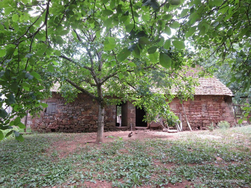 Maison à vendre 4 75m2 à Badefols-d'Ans vignette-1