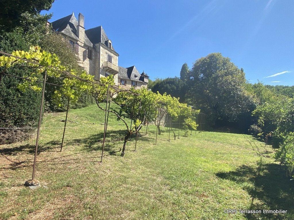 Maison à vendre 9 230m2 à Terrasson-Lavilledieu vignette-3