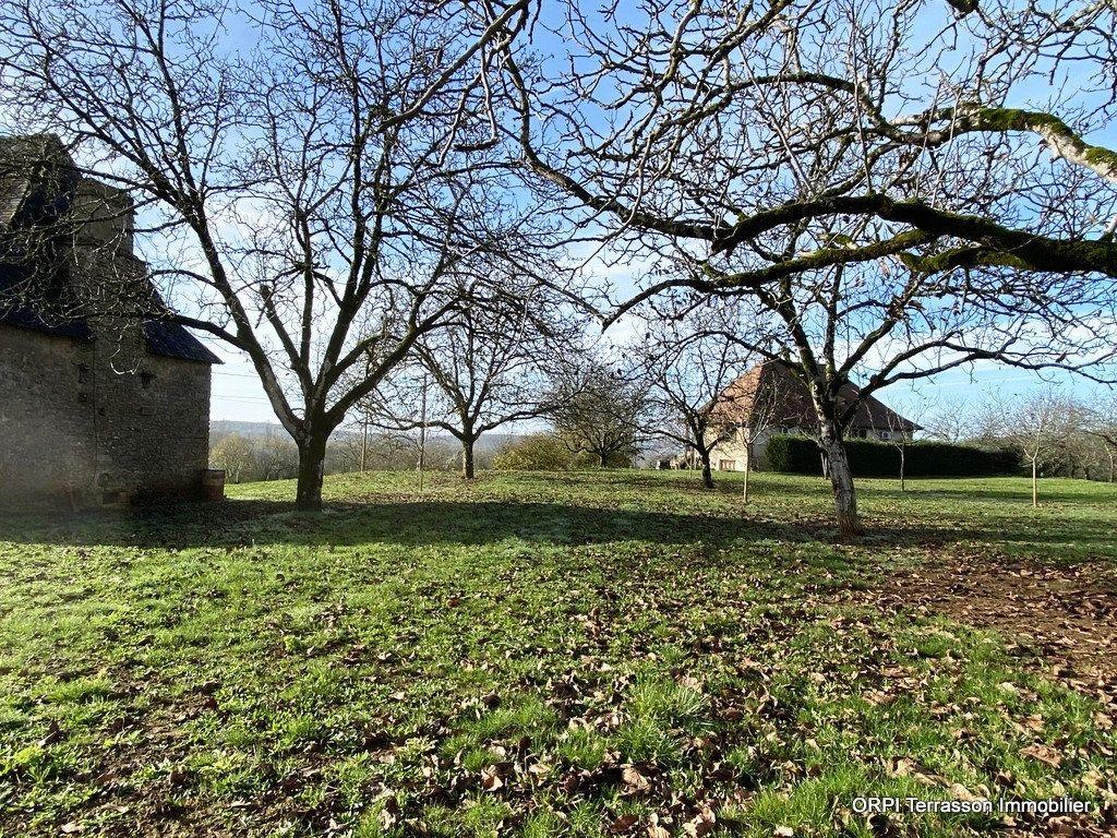 Maison à vendre 1 94m2 à Terrasson-Lavilledieu vignette-3