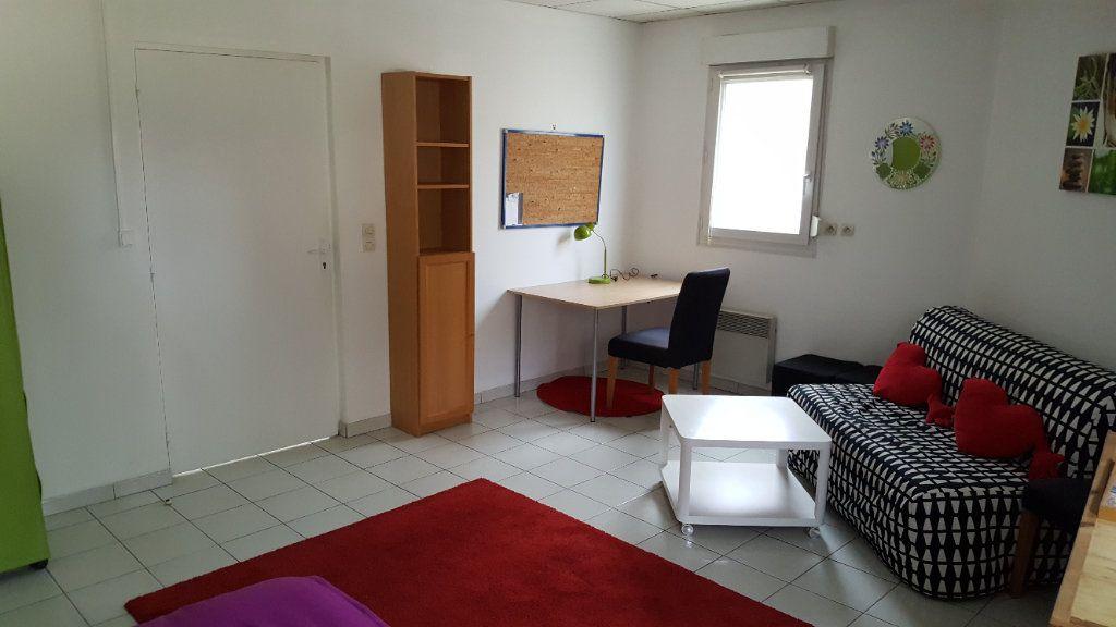 Appartement à louer 1 24m2 à Elbeuf vignette-5