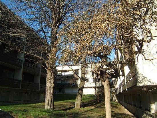 Appartement à vendre 2 44m2 à Toulouse vignette-5