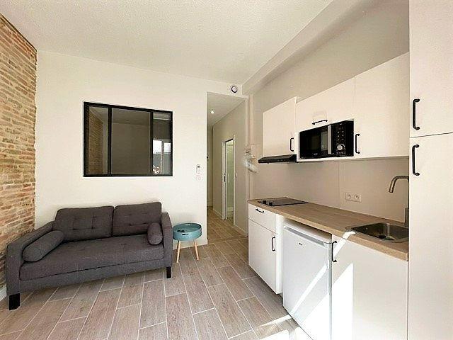 Appartement à louer 2 23.02m2 à Toulouse vignette-3