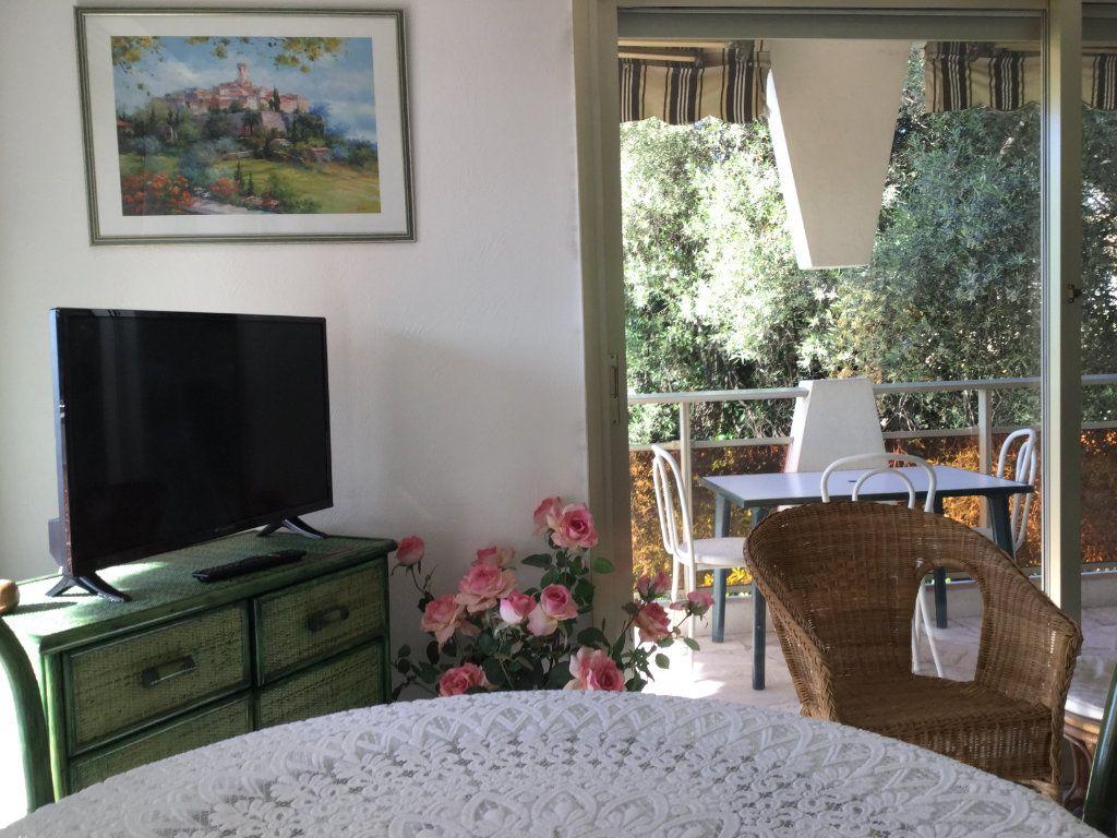 Appartement à vendre 2 46m2 à Villeneuve-Loubet vignette-13