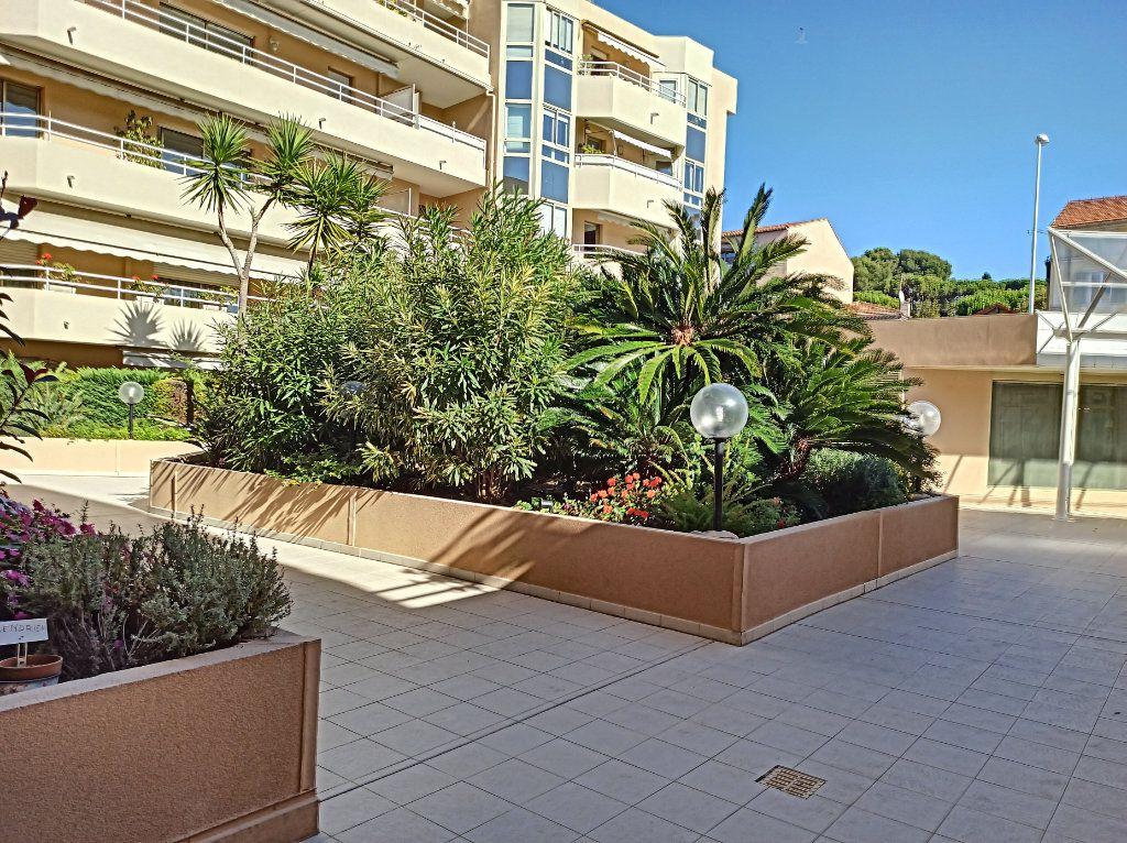 Appartement à vendre 1 33m2 à Cagnes-sur-Mer vignette-9