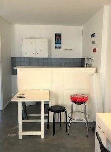 Appartement à louer 1 26.6m2 à Lyon 8 vignette-1