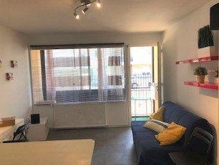 Appartement à louer 1 26.6m2 à Lyon 8 vignette-8