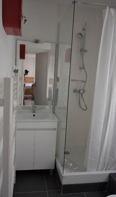 Appartement à louer 1 24.43m2 à Lyon 3 vignette-3