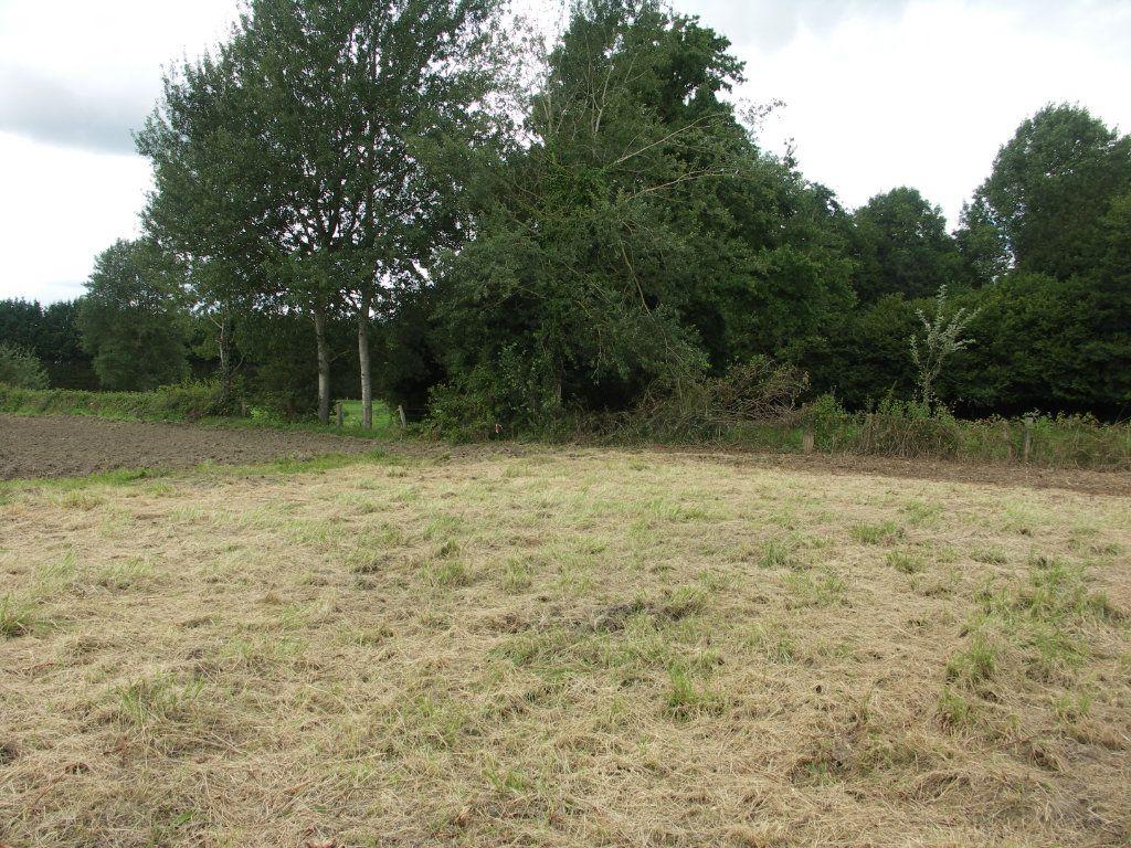Terrain à vendre 0 2361m2 à Blérancourt vignette-10