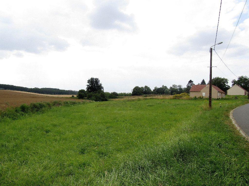 Terrain à vendre 0 3829m2 à La Neuville-en-Beine vignette-2