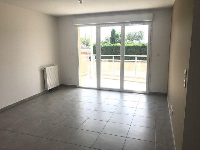 Appartement à louer 3 55m2 à Pinsaguel vignette-2