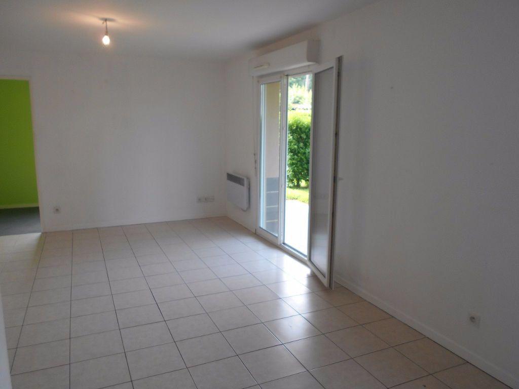 Appartement à louer 3 55m2 à Verquin vignette-4