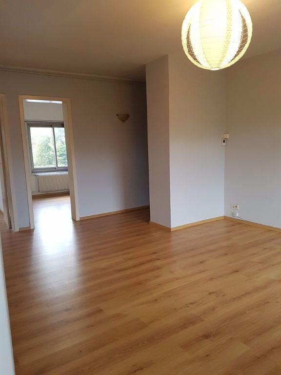 Appartement à louer 3 55m2 à Béthune vignette-1