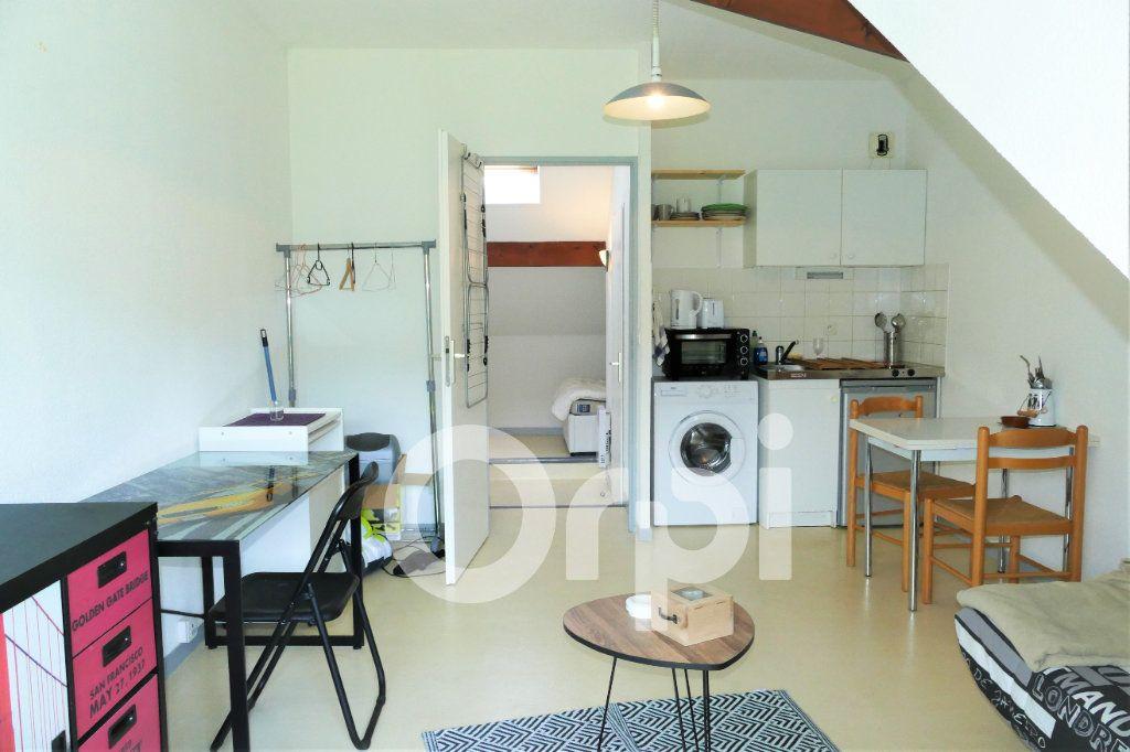 Appartement à louer 1 20m2 à Chambéry vignette-4
