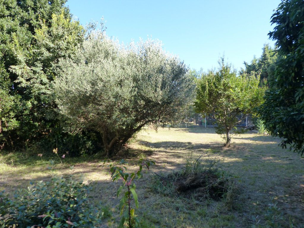 Maison à vendre 6 211m2 à Perpignan vignette-9