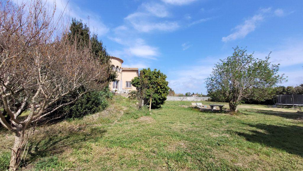Maison à vendre 6 211m2 à Perpignan vignette-11