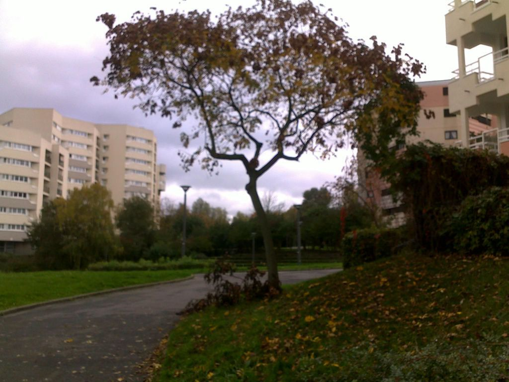 Appartement à louer 3 58m2 à Champs-sur-Marne vignette-3