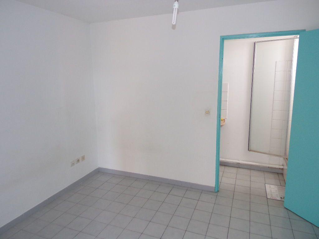 Appartement à vendre 2 43.05m2 à Ducos vignette-4