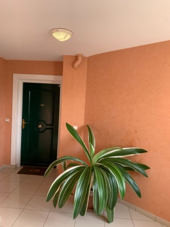 Appartement à vendre 5 120.2m2 à Schoelcher vignette-2