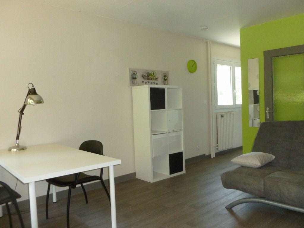 Appartement à louer 1 27.43m2 à Saint-Étienne vignette-4