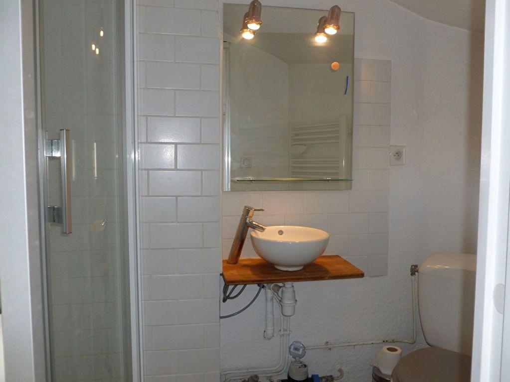 Appartement à louer 2 27.33m2 à Saint-Étienne vignette-6