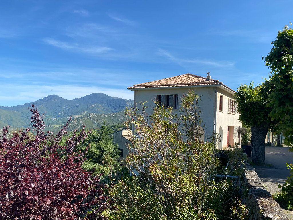 Maison à vendre 6 162m2 à Poggio-di-Venaco vignette-1