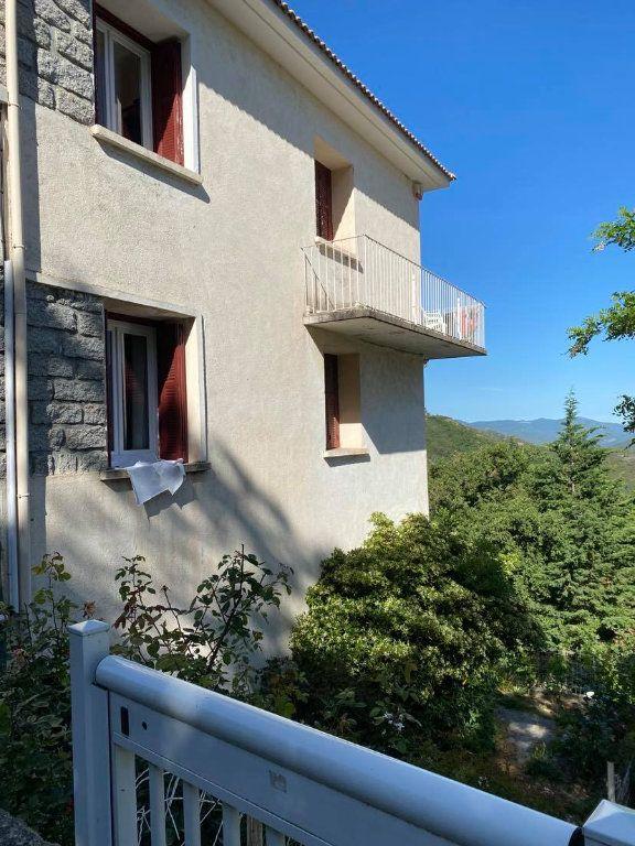 Maison à vendre 6 162m2 à Poggio-di-Venaco vignette-4