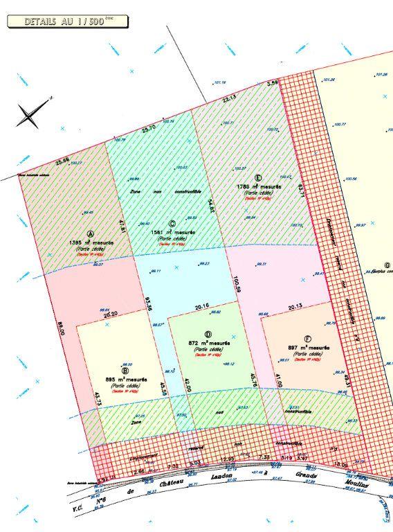 Terrain à vendre 0 1395m2 à Château-Landon vignette-2