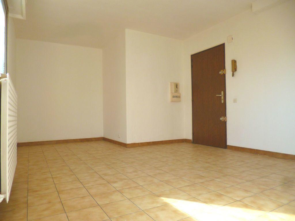 Appartement à louer 1 24m2 à Vallauris vignette-2