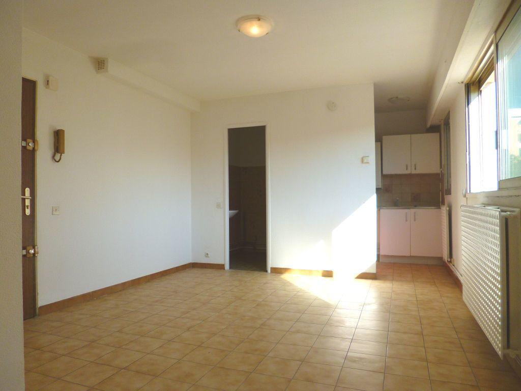 Appartement à louer 1 24m2 à Vallauris vignette-3