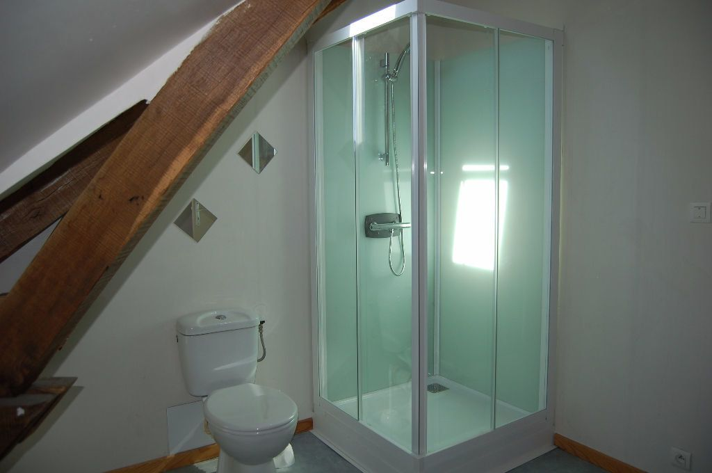 Appartement à louer 2 39m2 à Saint-Satur vignette-6