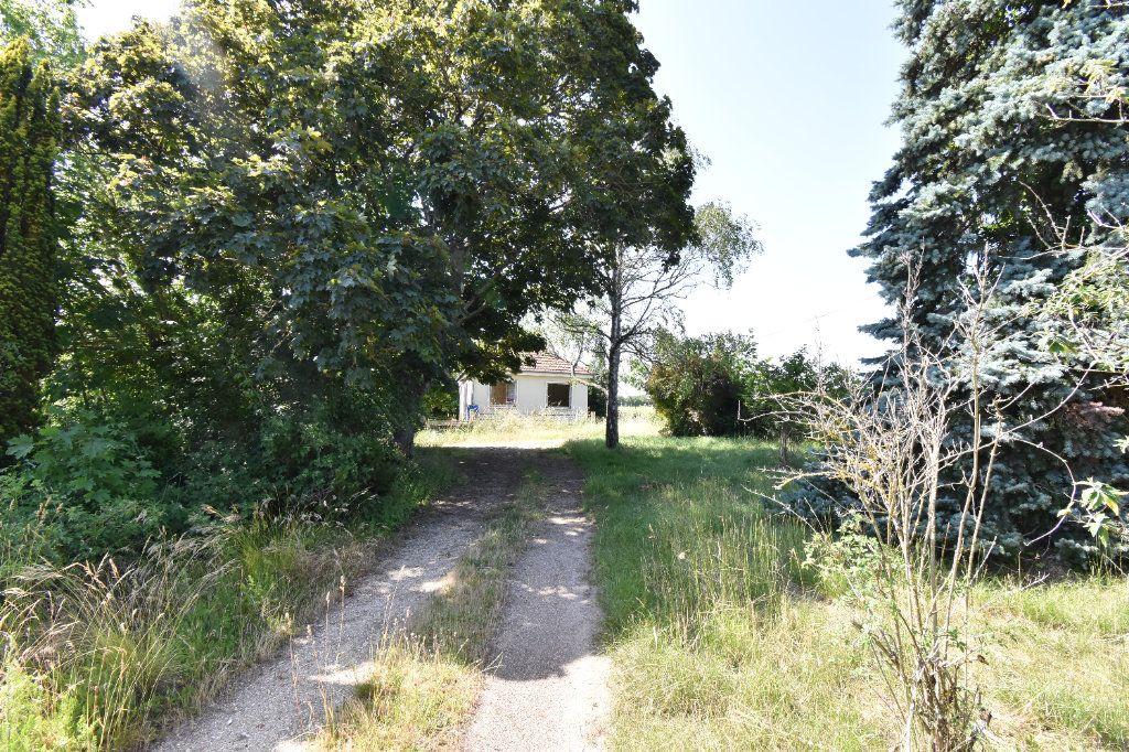 Maison à vendre 3 53m2 à Pouilly-sur-Loire vignette-4