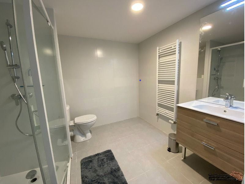 Appartement à louer 2 47.07m2 à Thonon-les-Bains vignette-5