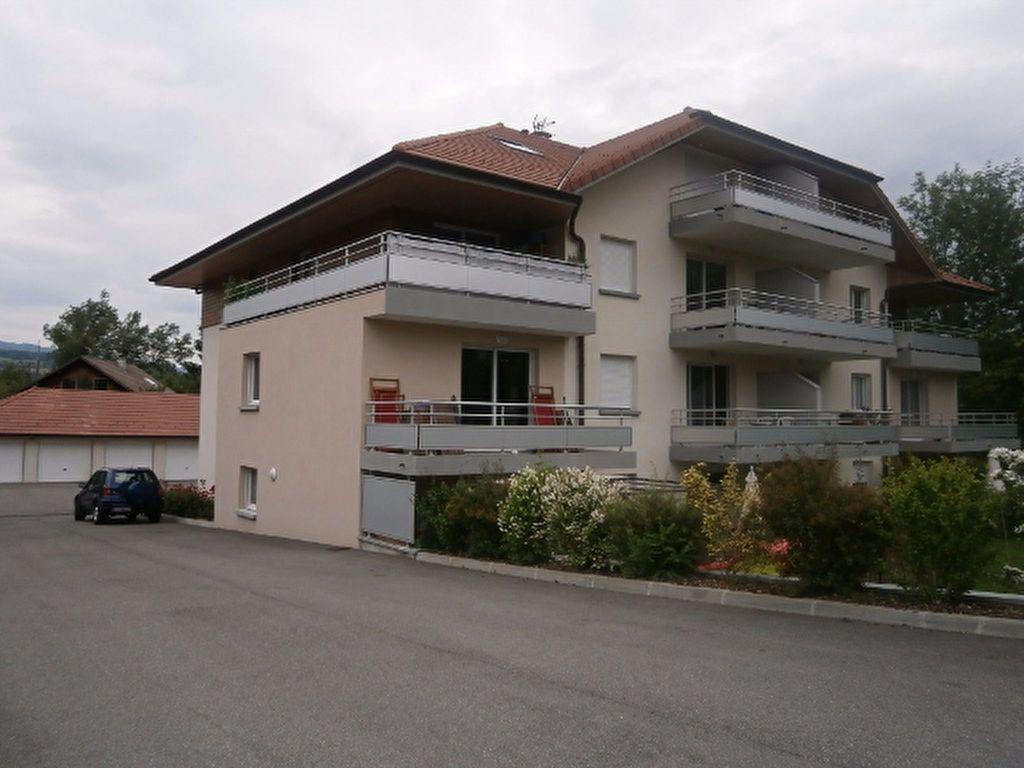 Appartement à louer 2 44m2 à Allonzier-la-Caille vignette-6