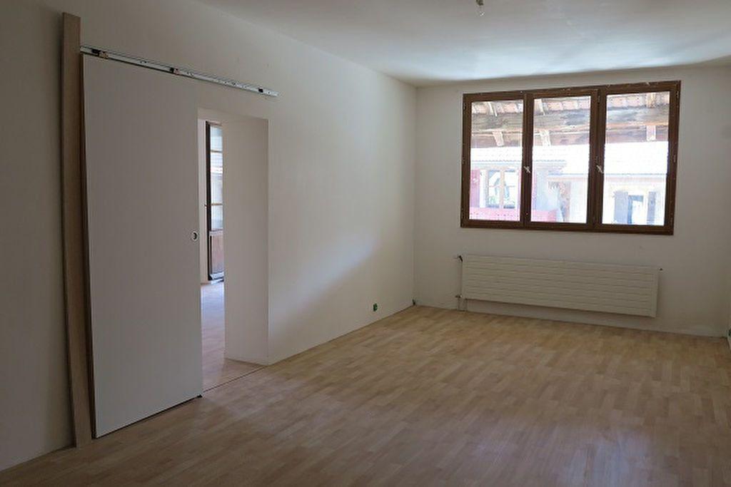 Maison à vendre 6 140m2 à Saint-Julien-en-Genevois vignette-2