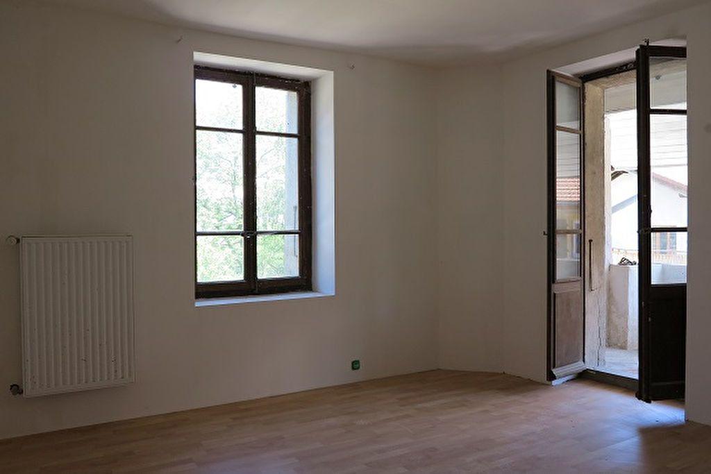 Maison à vendre 6 140m2 à Saint-Julien-en-Genevois vignette-3