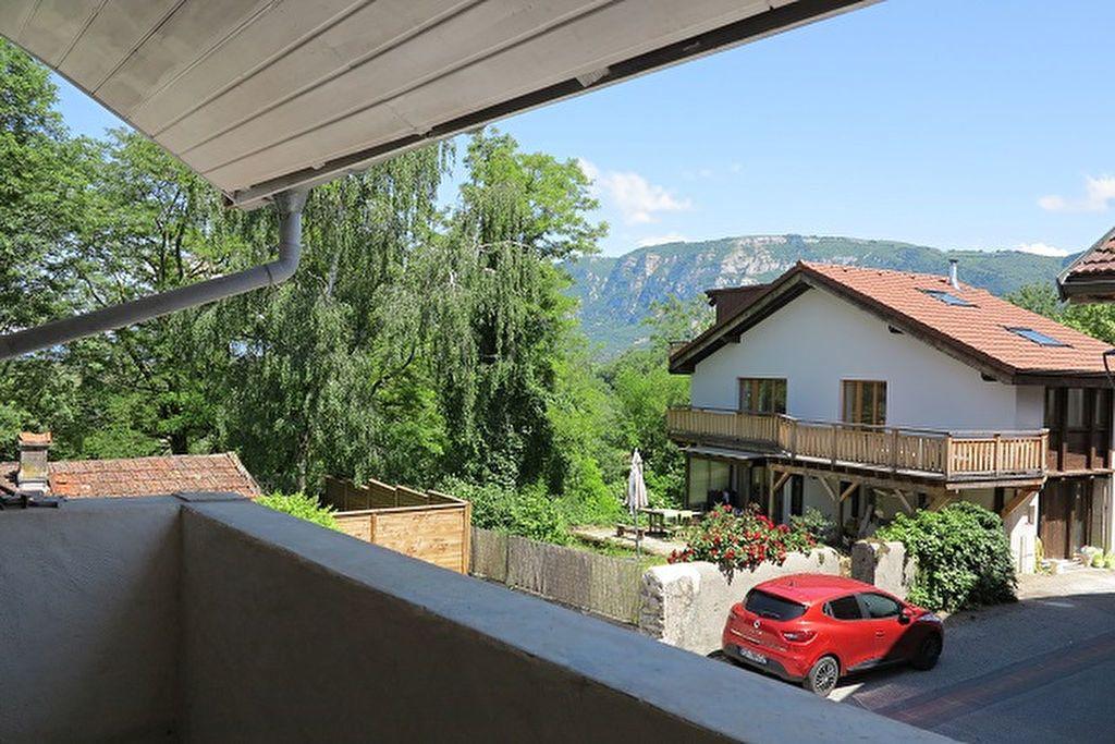 Maison à vendre 6 140m2 à Saint-Julien-en-Genevois vignette-4